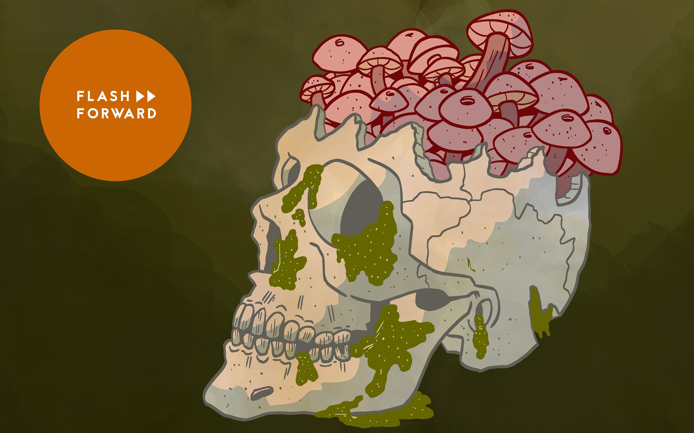 Fungus Among Us | Flash Forward